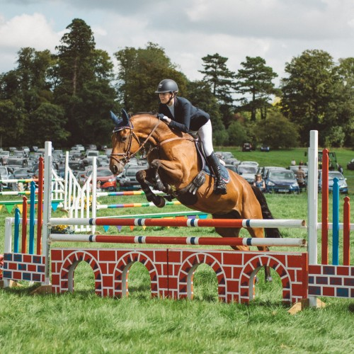 The Blakesley Show 2019